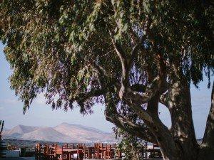 El RESTAURANTE BODEGAS RUBICON entre los 10 mejores de Lanzarote