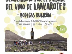 Senderismo, Visita y Degustación de Vinos en Bodegas Rubicón!